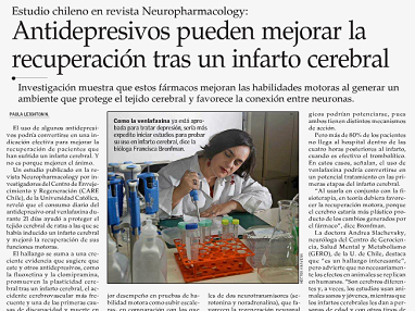 El Mercurio newspaper highlights research by Dr. Francisca Bronfman